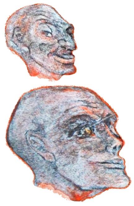 Hilma af Klint, Taube Nr. 8 (Detail)