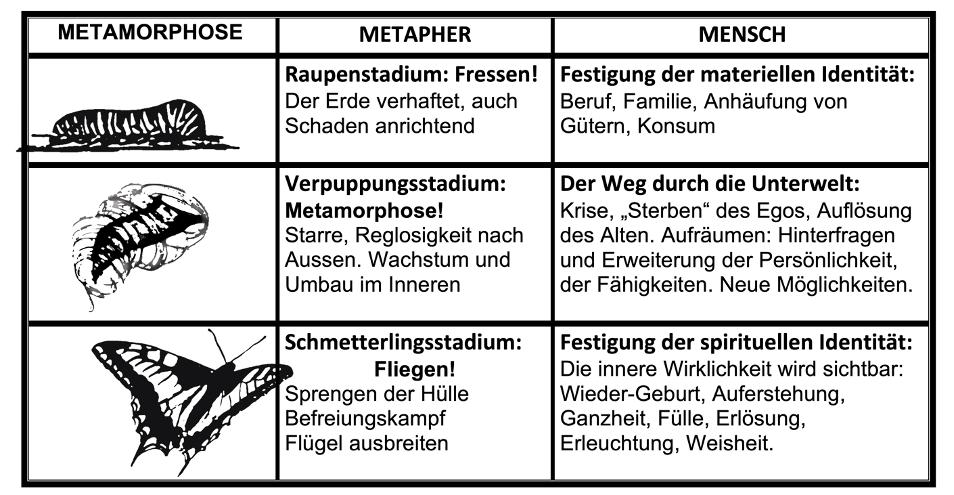 Tabelle zur Metamorphose